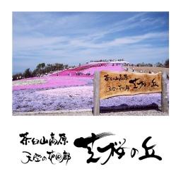 <h5>2008 – Cherry Blossom Hill – Mount Chauseyama Plateau – Toyone Village Tourism Association</h5><p></p>